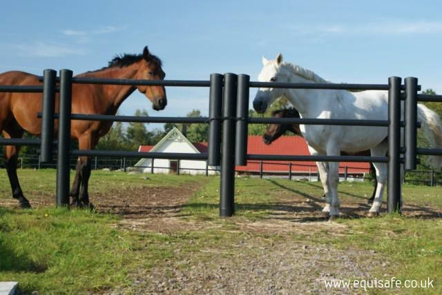 electric fencing for horses